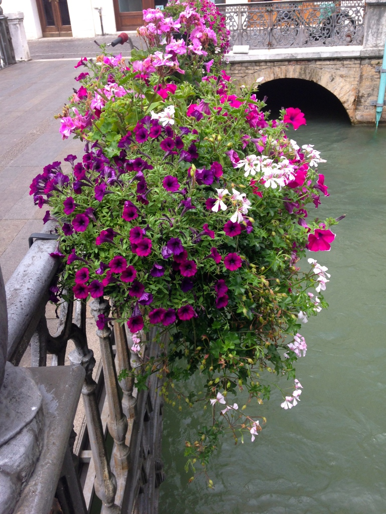 I love that there are flowers everywhere in Italy, on windowsills and bridges and balconies