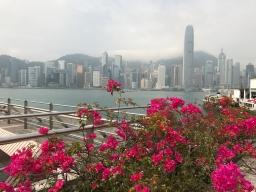 Day 2-3: Hong Kong Heroes